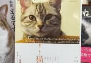 贅沢過ぎるラインナップ!『ユリイカ2010年11月号 特集=猫』