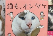 昭和です、シュールです、ジンワリ笑えます…コミック『猫も、オンダケ/和田ラヂオ』