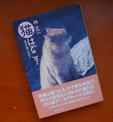 「猫はどこ」表紙