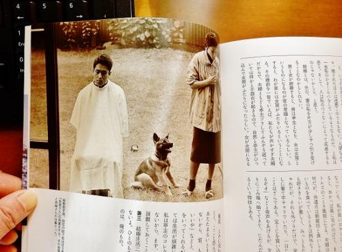 写真5「散髪と犬」 (500x368)