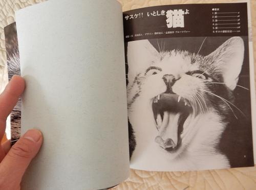 昭和猫サスケ2 (500x372)