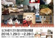 猫の合同写真&物販展「ねこ休み展 冬 2016」