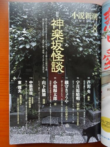 神楽坂怪談扉 (375x500)
