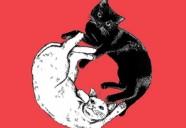 白猫と黒猫、あなたとわたし