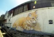 ネコ好き担当者ちょっと出て来い、の街 | 世界のニャ窓から file #15