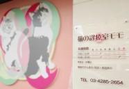 品川区にキュートな猫専門病院オープン!里親募集コーナーも
