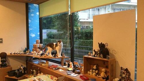 CAT'S INN TOKYO2