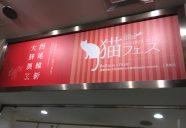 ブレイク確実の作家さんを探しに「猫フェス IN GINZA 2017」に行ってみた!ーにゃんマガ副編突撃レポ・松岡が行く!#4