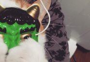嫌よ嫌よは「マジで嫌」! 首輪嫌いの猫を生むNG行動