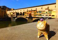 猫と暮らし、猫を創る。—イタリアの自由猫(gatto libero)—