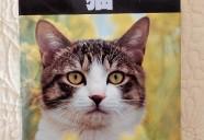 動物写真家としてのプライド。昭和50年代の猫写真集