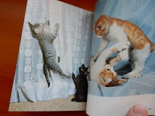 昭和猫2冊2 (500x375)