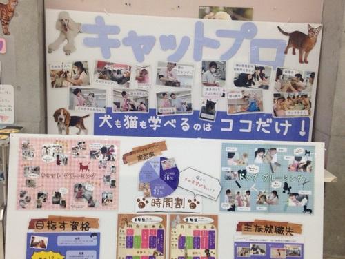 ちば愛犬動物フラワー学園1