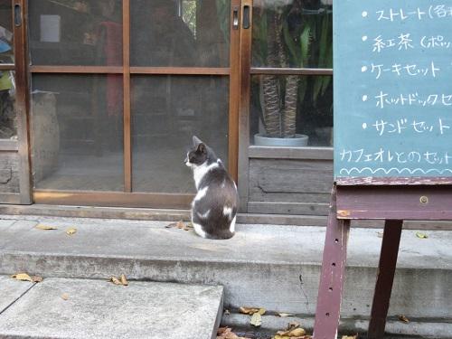 「だれか入らないかな…」