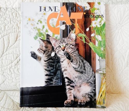 愛する猫たち表紙 (500x428)