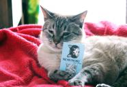 ちょいリアル猫柄に胸キュン♪ペーパーアイテム「NEMUNOKI」の猫もの (ライター龍馬)