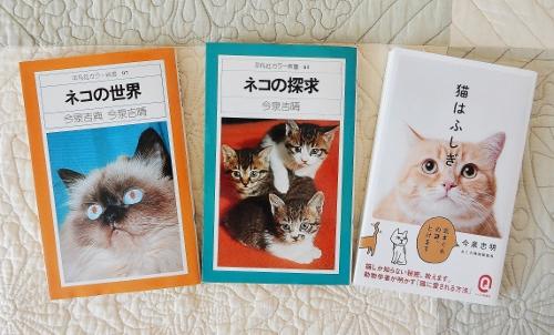 今泉ネコ本3冊 (500x302)