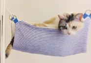 500円以下で作れるサクッと作れる猫専用のニャンモック