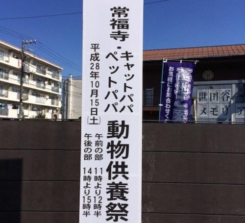 IMG_1130 縺ョ繧ウ繝偵z繝シ
