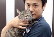 預かりボランティアになろう!猫学・番外編「ねこ飼育&預かり講座」