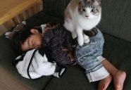 オーナーはこんな人−猫専用アパート in 沖縄