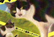当店猫2匹がモデルの作品、『大ハチワレ展』で優秀賞!